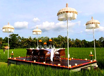 Rice paddy romance in Bali